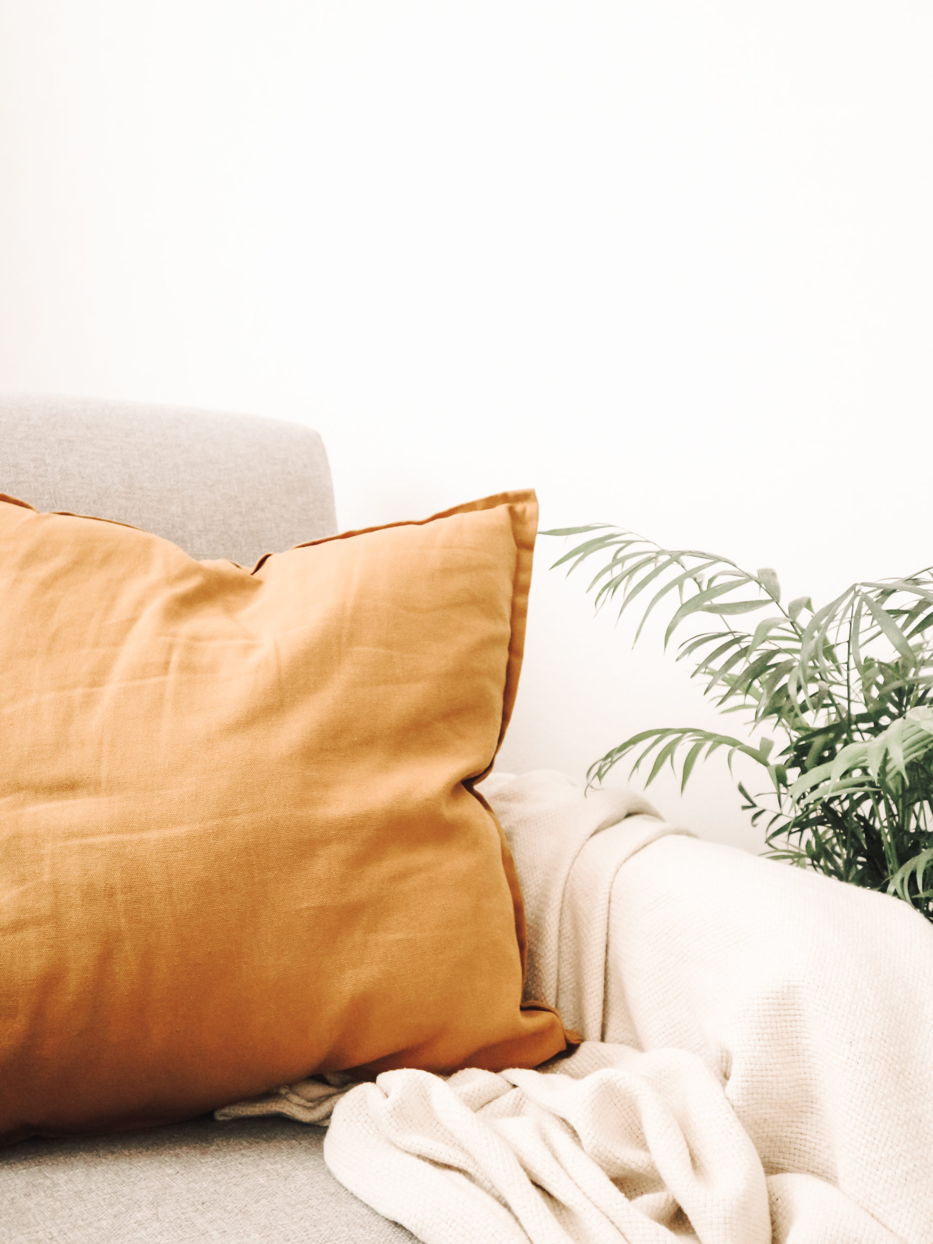 Grey armchair with mustard coloured cushion and a plant.
