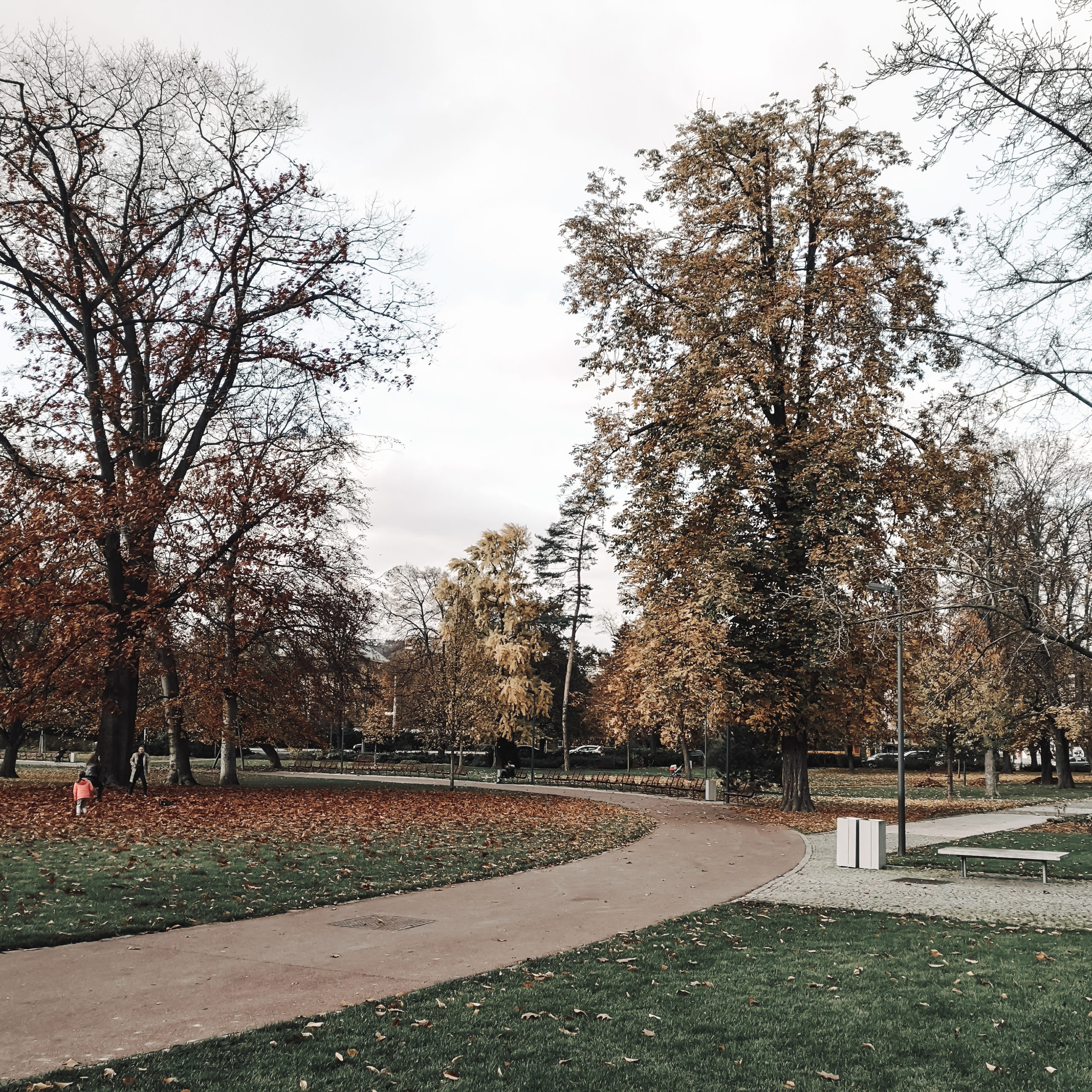 Park in Zlín during autumn.