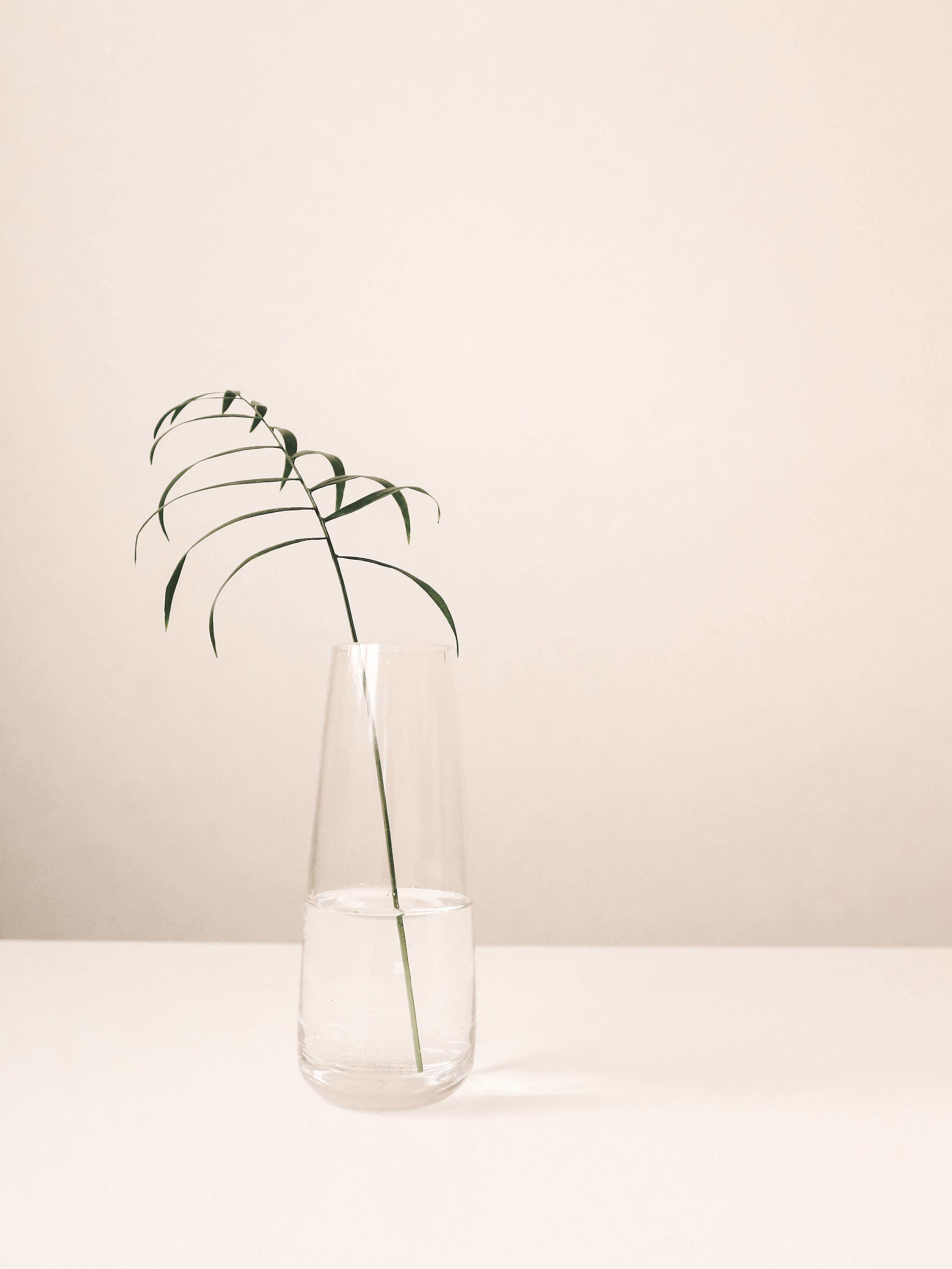 Clear vase with a leaf on a white table.